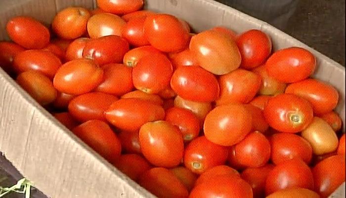 مہنگائی کی مار!  ٹماٹر کی قیمت دوگنی قیمت سے بھی زیادہ