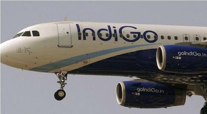چنئی: ہوائی جہاز سے پرندہ ٹکرانے کے بعد انڈگو فلائٹ کی ایمرجنسی لینڈنگ