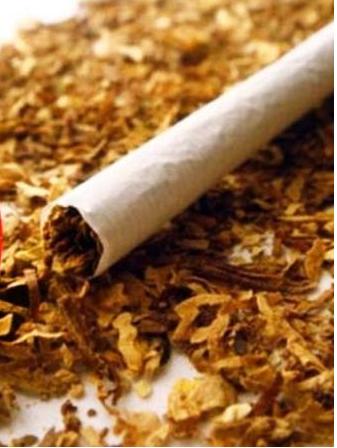 تمباکو کے غلط استعمال پر روک لگانے کے لئے یوم عالمی تمباکو معاہدہ کانفرنس