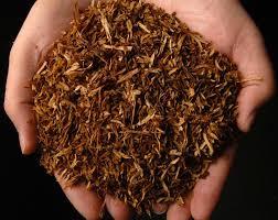 ملک کو تمباکو سے آزاد بنانےکے لئے آئی ڈی اے کی عوامی بیداری مہم