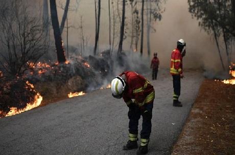 اسپین کے جنگلات میں آگ، ستائیس کی موت، سڑک اور ریلوے متاثر