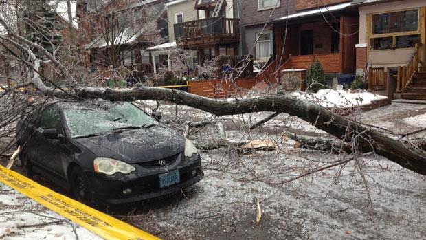 کینیڈا میں شدید برفباری، لاکھوں افراد بجلی سے محروم
