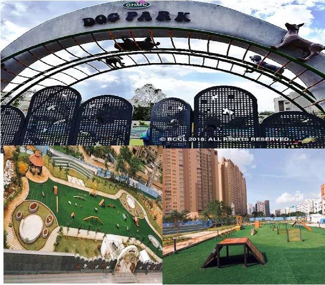 حیدرآباد میں کھلا ملک کا پہلا خصوصی
