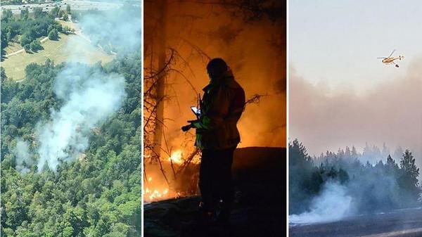 سویڈن کے جنگلات میں لگی خوف ناک آگ قابو سے باہر