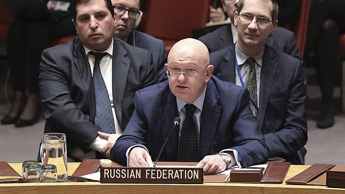 شام :جاپان کی تجاویز کو روس نے ویٹو کردیا