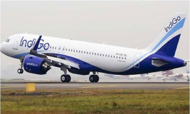 ٹل گیا بڑا حادثہ، ٹیک آف کے دوران انڈیگو کے جہاز سے ٹکرایا پرندہ