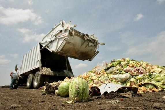ملک میں سالانہ ایک لاکھ کروڑ کے اناج کی بربادی