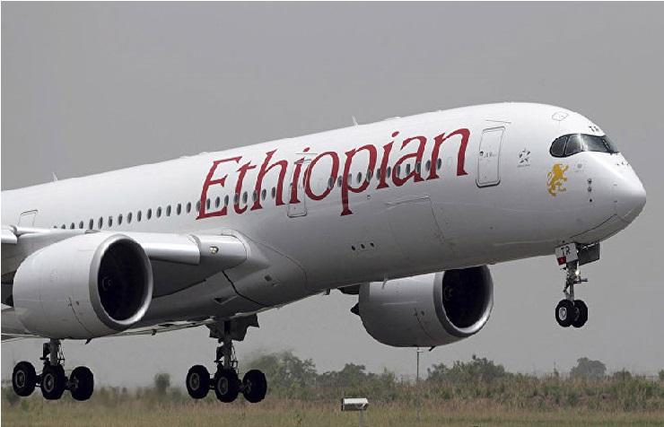 ہندوستان میں اڑتے ہیں 17 بوئنگ 737 میکس 8