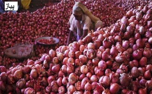 پیاز کی بمپر فصل، کسانوں کی مدد کے لئے آگے آیا ریلوے