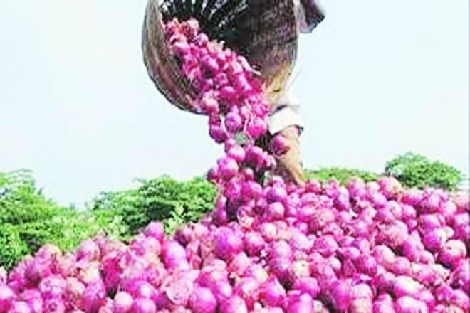 تلنگانہ حکومت کسانوں کو سبسیڈی پر پیاز کے بیج فراہم کرنے پر غور کررہی ہے