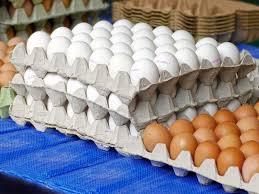 برڈ فلو کا خوف،حیدرآباد میں انڈوں کی قیمت میں گراوٹ