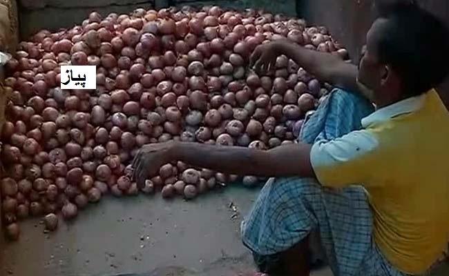 مدھیہ پردیش: پیاز کی زبردست پیداوار ، دام نہ ملنے سے بھینسوں کو کھلانے پر مجبور کسان