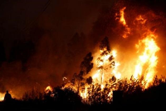 تمل ناڈو کے جنگل میں لگی آگ سے اب تک 8 لوگوں کی فوت