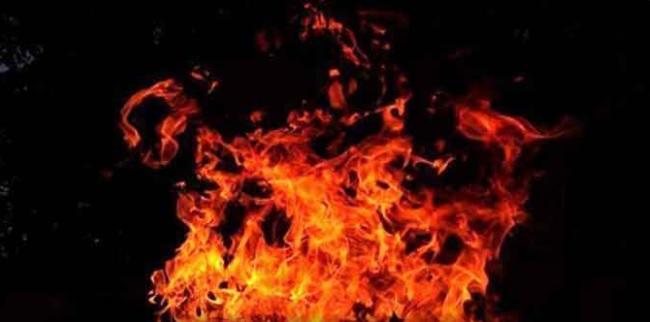 تلنگانہ: ضلع رنگاریڈی کی پلائی ووڈ کمپنی کی عمارت میں آگ لگنے کا واقعہ