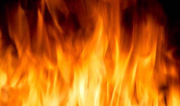 پیراگڈھی آگ حادثے کی جانچ کرائم برانچ کرےگی