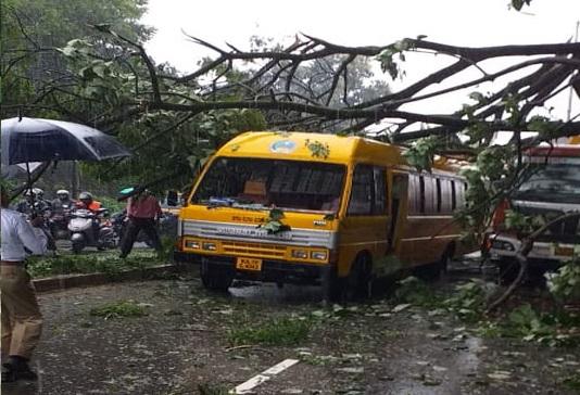 منگلورو: طلباء سے بھری اسکول بس پر گرا  درخت، بال بال بچے 17 بچے
