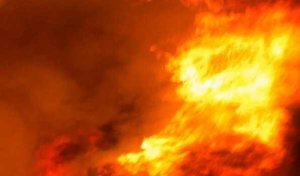 تملناڈو میں پٹاخہ فیکٹری میں آتشزدگی، سات افراد ہلاک، 24 زخمی