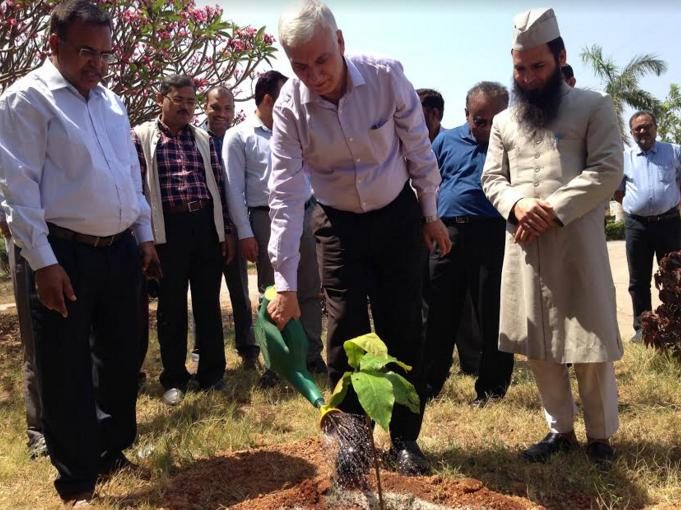 درخت، آکسیجن اور صاف پانی کی فراہمی کا اہم ذریعہ