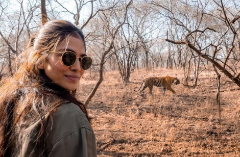 مالویکا نے رنتھمبور کے جنگلوں سے شیئر کی تصویر