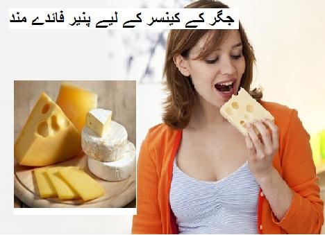 جگر کے کینسر کے لیے پنیر فائدے مند