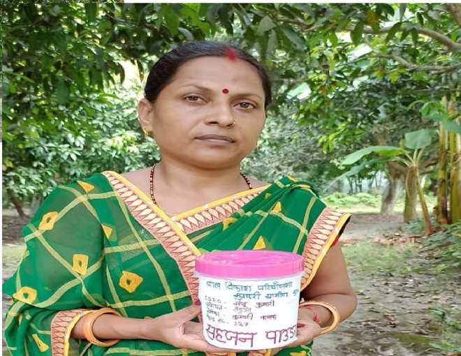 ڈرم اسٹک پاؤڈر حاملہ خواتین اور بچوں کومقوی غذا فراہم کرے گا