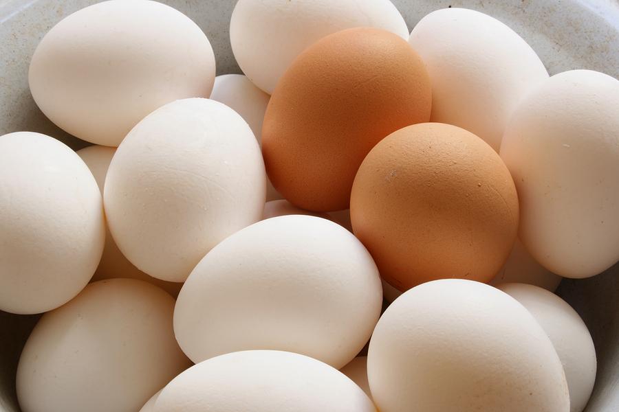 اگر آپ انڈے کھاتے ہیں تو ضرور پڑھیں یہ خبر ...
