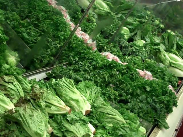 اچھی بینائی کیلئے ہری سبزیاں کھائیں