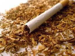 تمباكو سے پیدا ہونے والی بیماریوں سے ہر سال ہزاروں لوگو ں کی موت