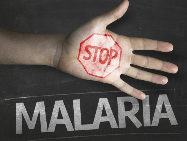 اب ملیریا کو جڑ سے کریں گے ختم، تحقیق کے لئے خرچ ہوں گے 4.3 ارب ڈالر