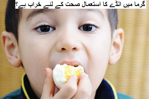 کیا موسم گرما میں انڈے کا استعمال صحت کے لئے خراب ہے؟