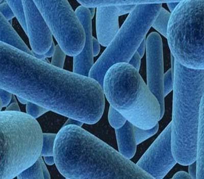 گرم پانی سے بیکٹریا نہیں مرتے