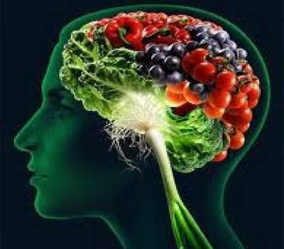 تیز دماغ کیلئے چند اہم غذائیں