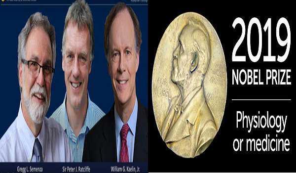 میڈیسن کا نوبل انعام مشترکہ طورپر کیلن ،ریٹکلف اور سیمنزاکو