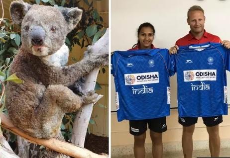 هاكي انڈیا کا بش فائير کیلئے عطیہ، آسٹریلیا نے کیا شکریہ