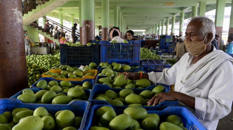 حیدرآباد کی بڑی فروٹ مارکٹ گڈی انارم کی کوہیڑا میں عارضی تعمیر پر توجہ مرکوز