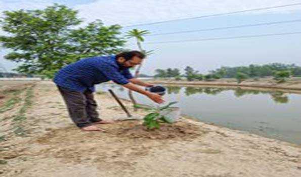 ماحولیات کا تحفظ ہماری ذمہ داری : نقوی