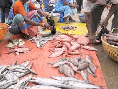 مرگ کے موقع پر شہر حیدرآباد میں مچھلی کی قیمتیں آسمان کو چھونے لگیں