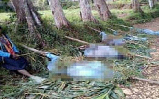 پاپوا نیو گنی میں تشدد، خواتین اور بچوں سمیت 16 افراد ہلاک