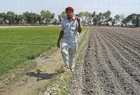حکومت چھوٹے کسانوں کو سالانہ چھ ہزار روپے کی مدد دے گی