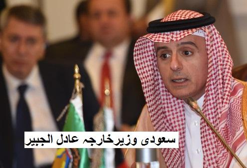 یمن میں جنگ بندی کے لیے سعودی تیار