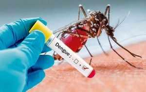 ہر بخار کو کورونا نہ سمجھیں۔ تلنگانہ کے 13 اضلاع میں ملیریا اور ڈینگو بخار