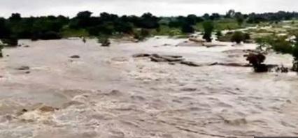 تلنگانہ: دریائے مانجرامیں تقریبا 11چرواہے پھنس گئے