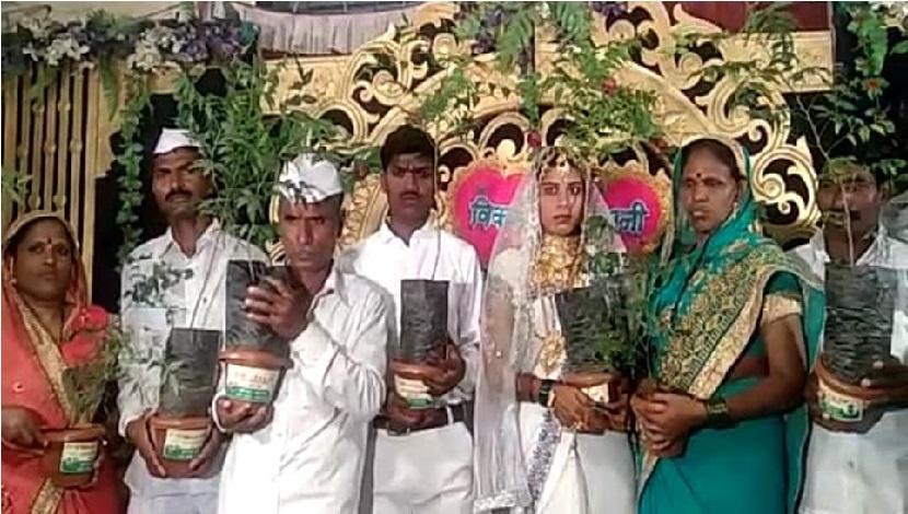 ایک کسان نے کی بیٹے کی انکھوی شادی، بارتیوں کو تحفہ میں دیئے ہزار نیم کے پودے